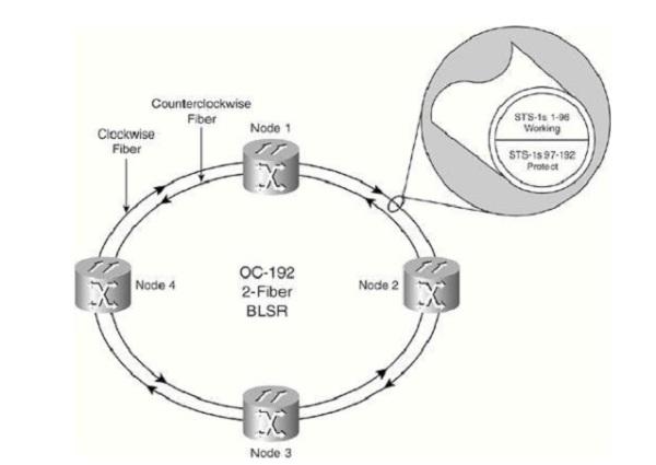 Topologia MS-SPRING de 2 fibras 04